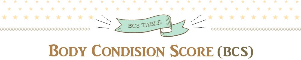 body Condision Score(BCS)