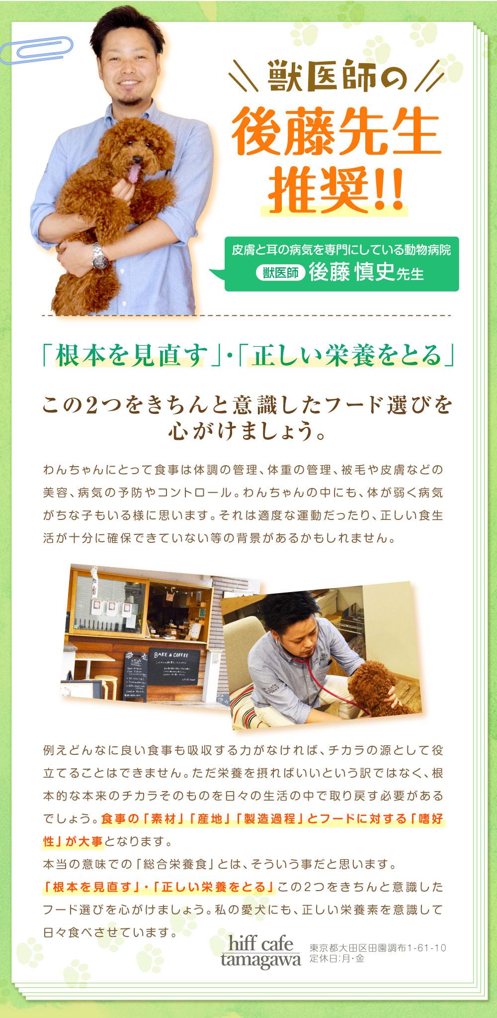 獣医師、後藤先生から推奨をいただきました!