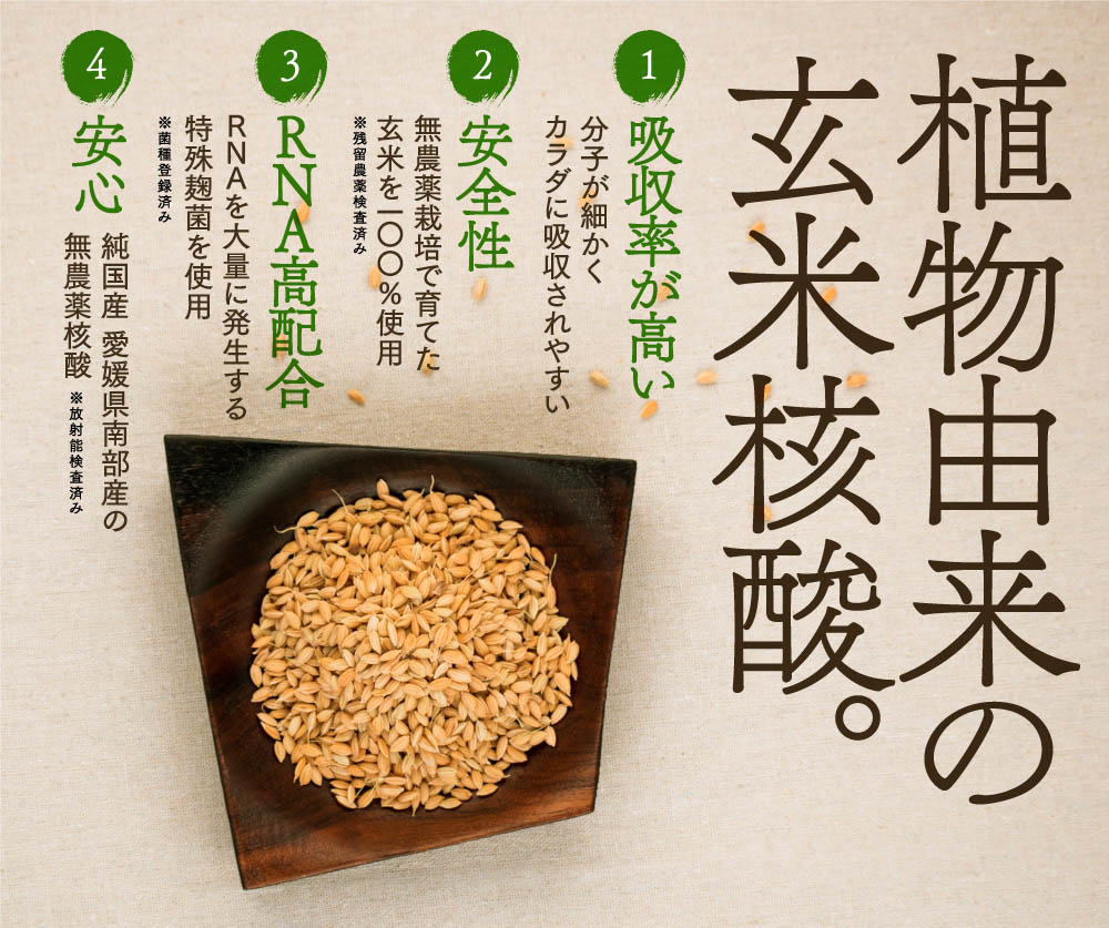 植物由来の玄米核酸