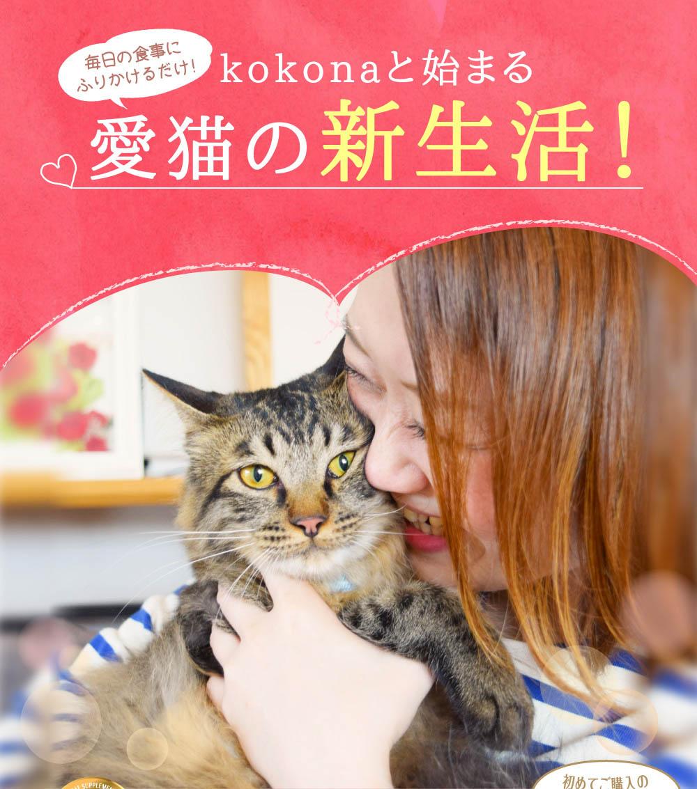 愛猫の新生活!