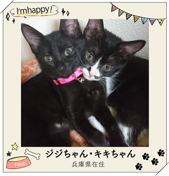 仲良し姉妹のジジちゃん・キキちゃん☆★