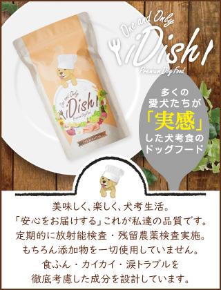 iDish-アイディッシュ-